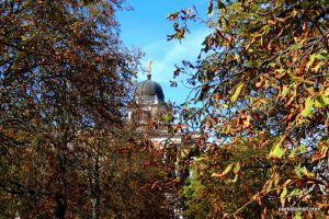 Park Sanssouci_Potsdam_09_2018 (54)