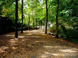 Park Sanssouci_Potsdam_09_2018 (87)