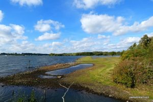 Pennington Flash Country Park_Wigan_092018 (25)