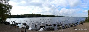 Pennington Flash Country Park_Wigan_092018 (4)