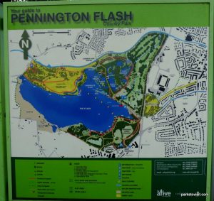 Pennington Flash Country Park_Wigan_092018 (7)