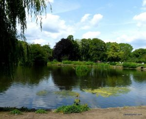 Alexandra park_Manchester_ 062019 (13)