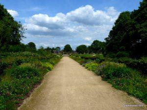 Alexandra park_Manchester_ 062019 (20)