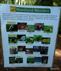 Yorkshire Wildlife Park_Doncaster_08_2019 (16)