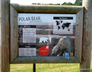 Yorkshire Wildlife Park_Doncaster_08_2019 (22)
