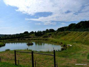 Yorkshire Wildlife Park_Doncaster_08_2019 (25)