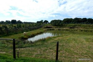 Yorkshire Wildlife Park_Doncaster_08_2019 (32)