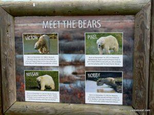 Yorkshire Wildlife Park_Doncaster_08_2019 (38)