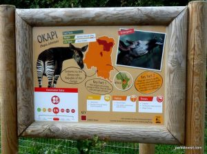 Yorkshire Wildlife Park_Doncaster_08_2019 (44)