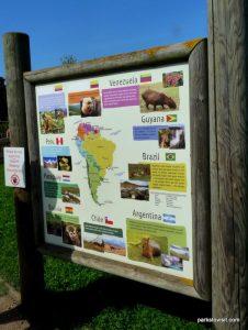 Yorkshire Wildlife Park_Doncaster_08_2019 (82)
