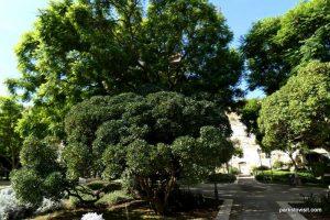 Giardini Pubblici_Cagliari_ Sardinia_092019 (18)