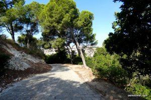Parco Di Monte Urpinu_Cagliari_Sardinia_09_2019 (21)