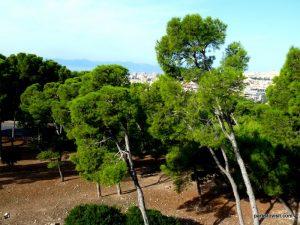 Parco Di Monte Urpinu_Cagliari_Sardinia_09_2019 (34)