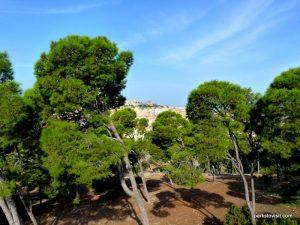Parco Di Monte Urpinu_Cagliari_Sardinia_09_2019 (36)
