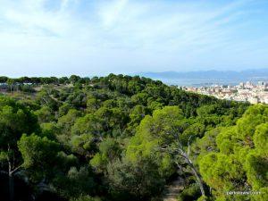 Parco Di Monte Urpinu_Cagliari_Sardinia_09_2019 (51)