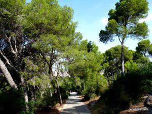 Parco Di Monte Urpinu_Cagliari_Sardinia_09_2019 (69)