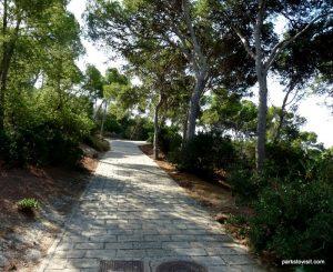 Parco Di Monte Urpinu_Cagliari_Sardinia_09_2019 (71)