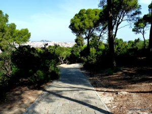Parco Di Monte Urpinu_Cagliari_Sardinia_09_2019 (72)