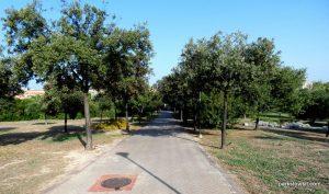 Parco di Monte Claro_Cagliari_092019 (16)
