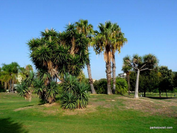Parco di Monte Claro, Cagliari