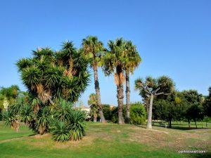 Parco di Monte Claro_Cagliari_092019 (31)
