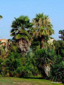 Parco di Monte Claro_Cagliari_092019 (35)