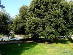Parco di Monte Claro_Cagliari_092019 (45)