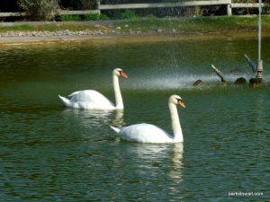 Parco di Monte Claro_Cagliari_092019 (50)