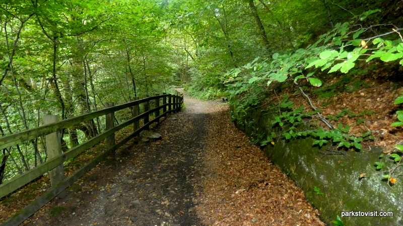 Healey Dell Nature Reserve_Rochdale_09_2021 (12)
