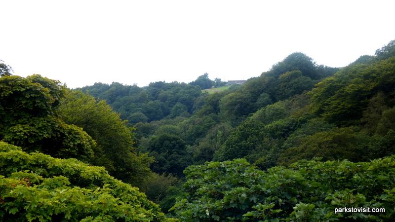 Healey Dell Nature Reserve_Rochdale_09_2021 (17)