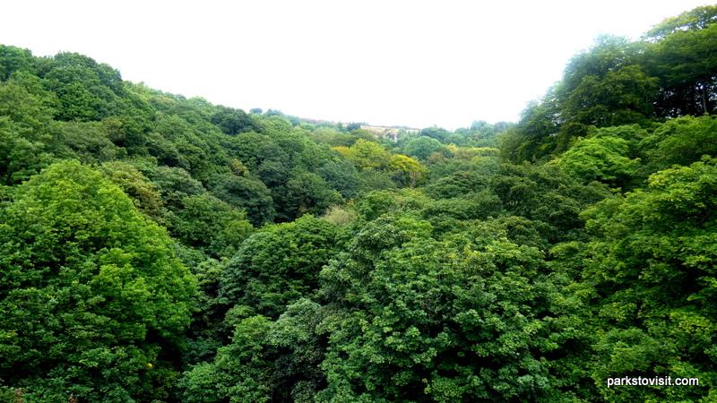 Healey Dell Nature Reserve_Rochdale_09_2021 (19)