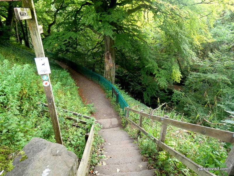 Healey Dell Nature Reserve_Rochdale_09_2021 (2)