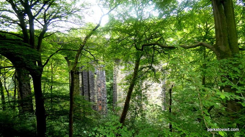Healey Dell Nature Reserve_Rochdale_09_2021 (20)
