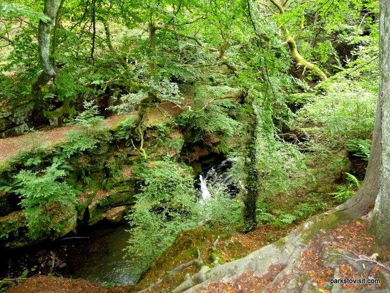 Healey Dell Nature Reserve_Rochdale_09_2021 (23)