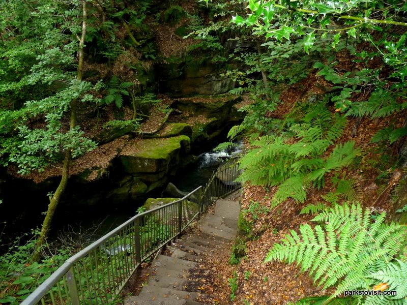 Healey Dell Nature Reserve_Rochdale_09_2021 (25)