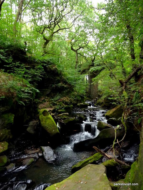 Healey Dell Nature Reserve_Rochdale_09_2021 (26)