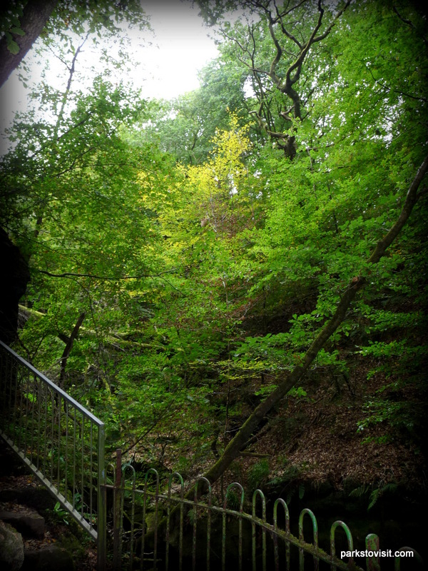 Healey Dell Nature Reserve_Rochdale_09_2021 (27)