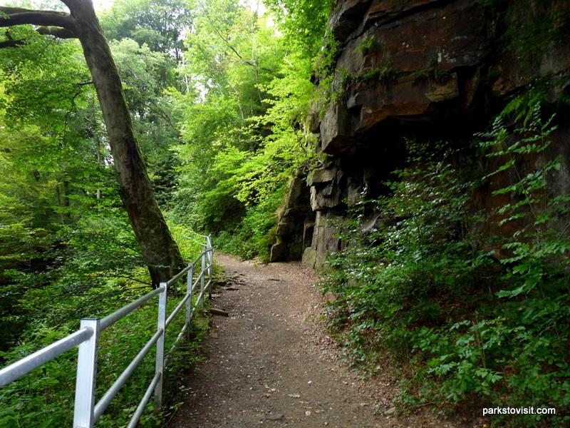 Healey Dell Nature Reserve_Rochdale_09_2021 (36)