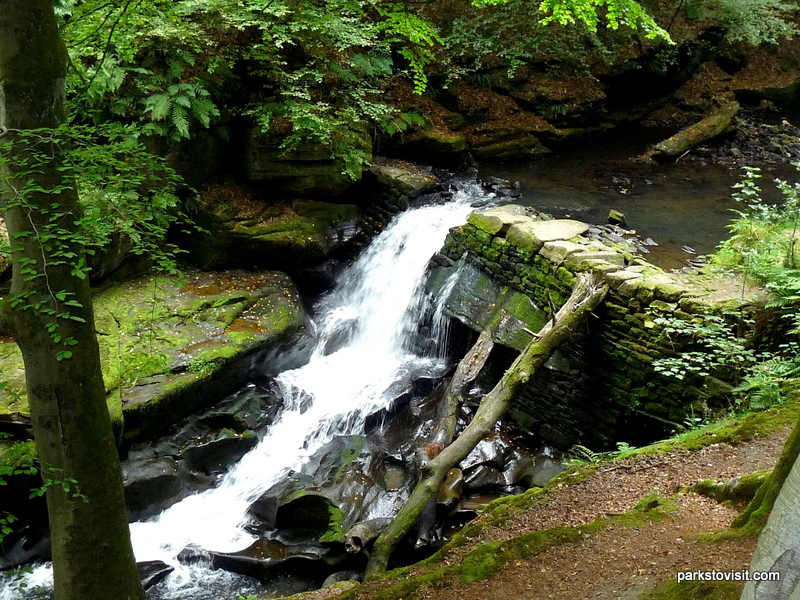 Healey Dell Nature Reserve_Rochdale_09_2021 (40)