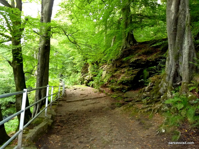 Healey Dell Nature Reserve_Rochdale_09_2021 (41)