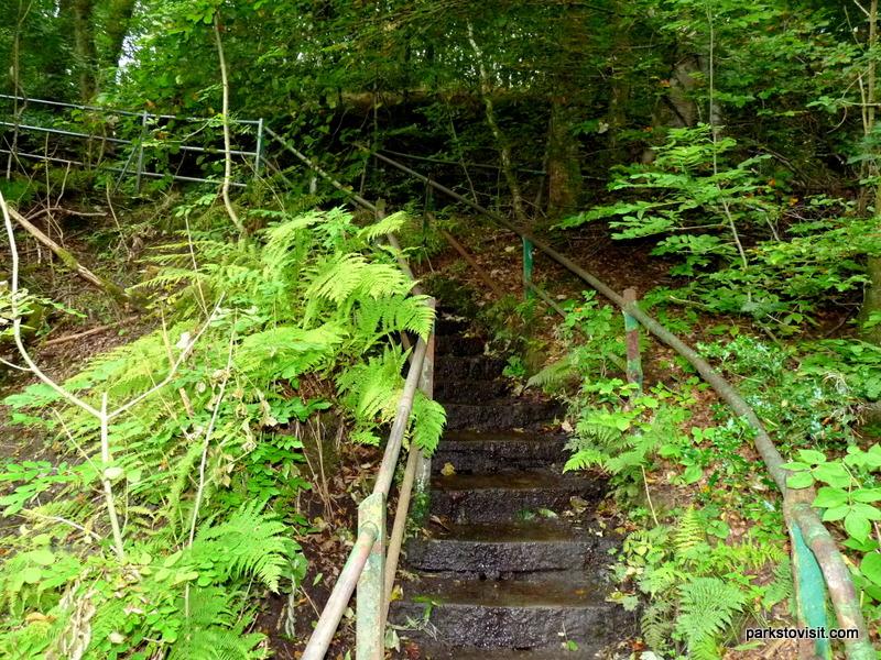 Healey Dell Nature Reserve_Rochdale_09_2021 (45)