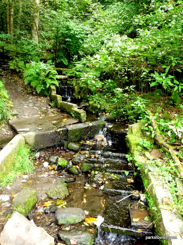 Healey Dell Nature Reserve_Rochdale_09_2021 (47)