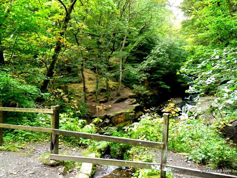 Healey Dell Nature Reserve_Rochdale_09_2021 (48)
