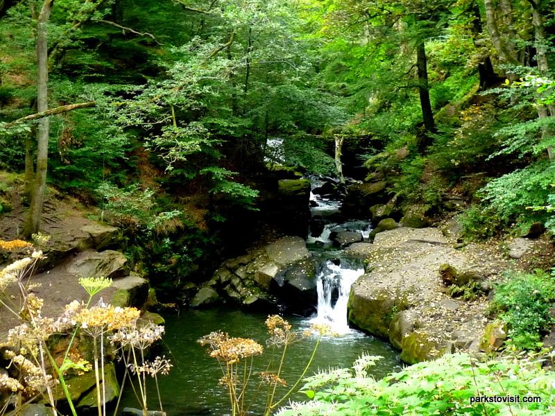 Healey Dell Nature Reserve_Rochdale_09_2021 (49)
