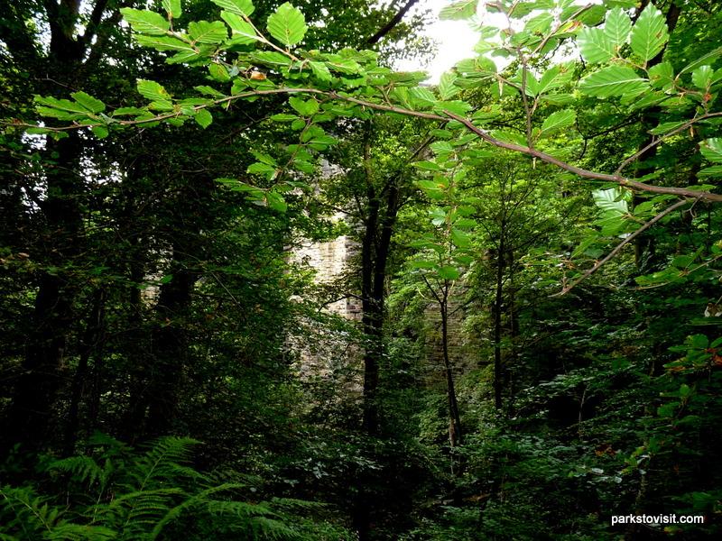 Healey Dell Nature Reserve_Rochdale_09_2021 (51)