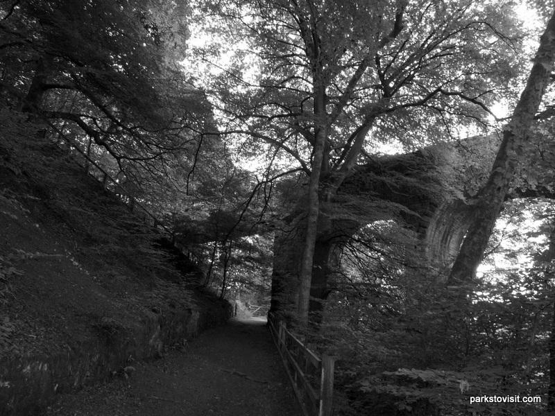Healey Dell Nature Reserve_Rochdale_09_2021 (52)