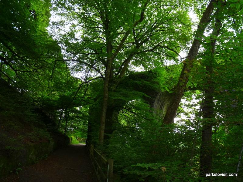 Healey Dell Nature Reserve_Rochdale_09_2021 (53)