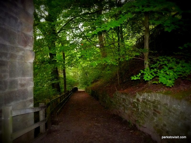 Healey Dell Nature Reserve_Rochdale_09_2021 (54)