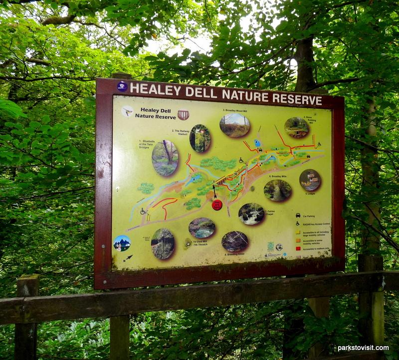 Healey Dell Nature Reserve_Rochdale_09_2021 (55)