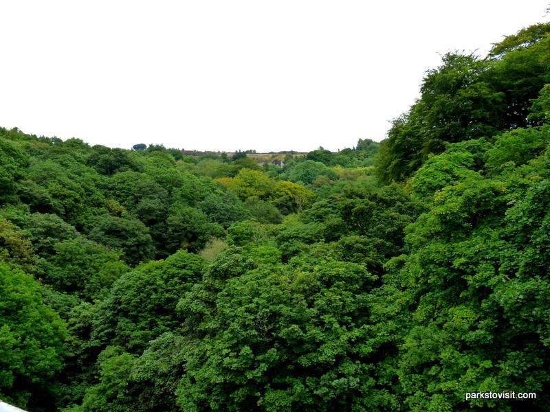 Healey Dell Nature Reserve_Rochdale_09_2021 (60)